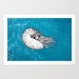 Nautilus Art Print