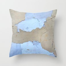 019 Throw Pillow