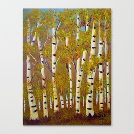 Birch trees-3 Canvas Print