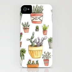 Potted Succulents Slim Case iPhone (4, 4s)