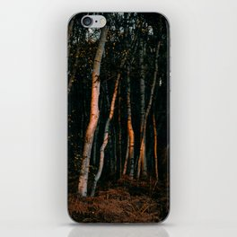Broken Light Over Birch Bark iPhone Skin