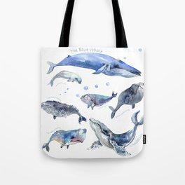 Whales, Whale design, whale wall art, sea, marine aquatic animal art, school learning wall Tote Bag