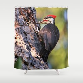 Pileated Woodpecker at Work Shower Curtain