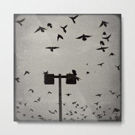 Revenge of the Birds  Metal Print