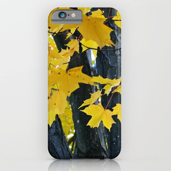 gold and black forest iPhone & iPod Case