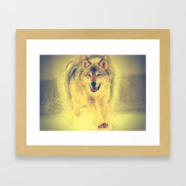 wolf canvas painting Framed Art Print
