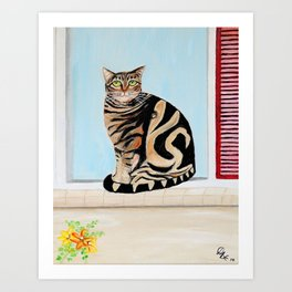 Are not asian print cat looking out window