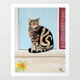 Cat sitting on window sill Art Print