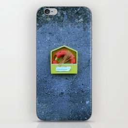 Ringbouy iPhone Skin