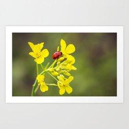 Ladybug on Yellow Art Print
