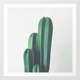 Organ Pipe Cactus Art Print