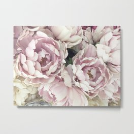 Roses, Pink Roses, Pastel Roses, Cottage Chic Roses Metal Print