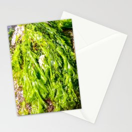 green Sea weed Stationery Cards