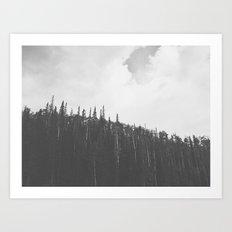 First snow of the season - Brian Head, Utah 9/22/13 Art Print