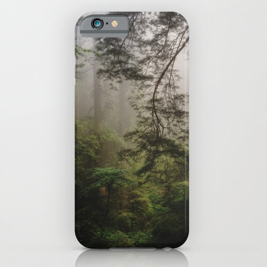 Foggy Forest iPhone & iPod Case