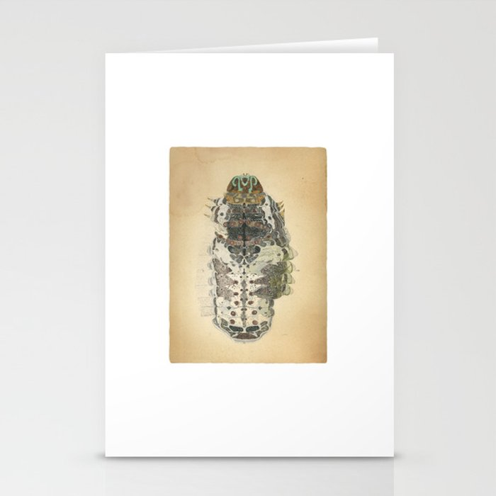 caterpillar of spangle Stationery Cards