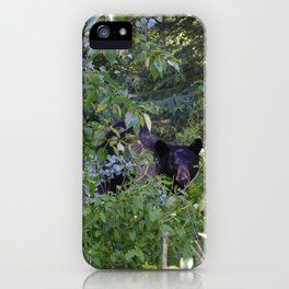 Mother bear hides in the trees- Canadian Rocky Mountains iPhone Case
