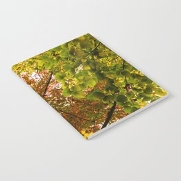 A Collage of Colorful Fall Leaves Notebook