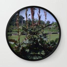 Rhubarb - Rheum sp. Wall Clock