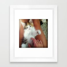 Kitten Chow Framed Art Print