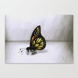 Surrealist Butterfly. Canvas Print