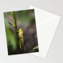 Yellow grasshopper Stationery Cards