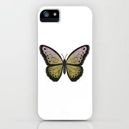kiwi velvet (Villutus kiwi) fantasy butterfly iPhone Case