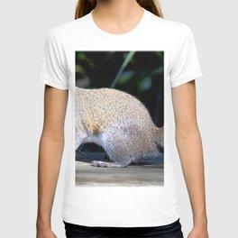 Watercolor Gray Squirrel 01, Gulf Island Beach, Florida T-shirt