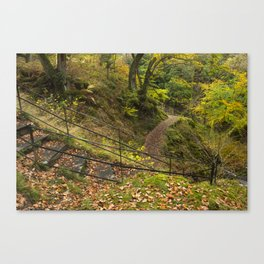 Steps and Autumnal woodland at Aira Force. Near Ullswater, Lake District, UK Canvas Print