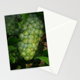 Waiting for the Harvest Stationery Cards