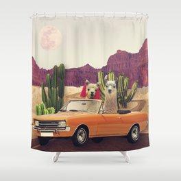 Llamas on the road 2 Shower Curtain