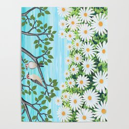 red bellied woodpeckers and daisies Poster
