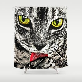 Grooming Tabby Cat Shower Curtain