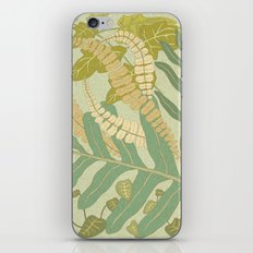Ferns iPhone & iPod Skin