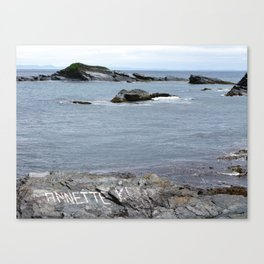 Gull Island Canvas Print