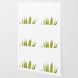 agave poster Wallpaper