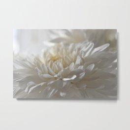 Chrysanthemum Textures Metal Print