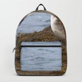 Watercolor Harbor Seal 03, Reykjarfjörður Iceland Backpack