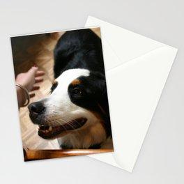 Pet Dog Stationery Cards