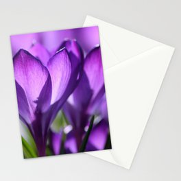 purple light Stationery Cards