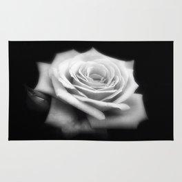 Pink Roses in Anzures 4 Dark Rug
