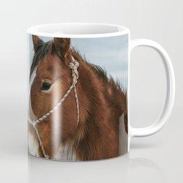 On the Road to Flagstaff, v.3 Coffee Mug