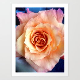A Rose for Rosie Art Print