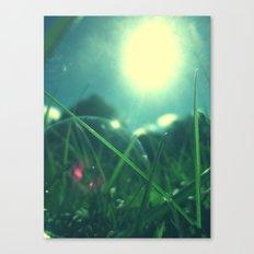 A Bubble's Perspective Canvas Print