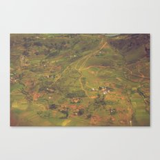 Miniature Madagascar Canvas Print
