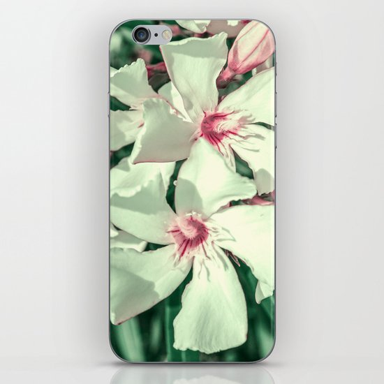 Summer Fresh iPhone & iPod Skin