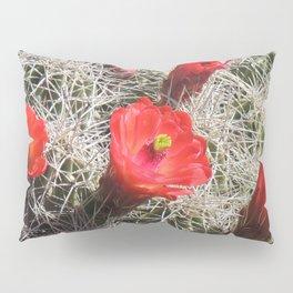 A Hedgehog Cactus Looks Sunward Pillow Sham