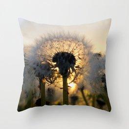 Last Light Dandelion Throw Pillow