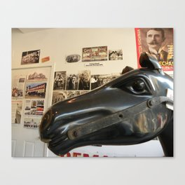 Coney Island Horse, 2008 Canvas Print