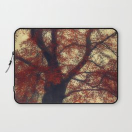 Copper Beech Laptop Sleeve